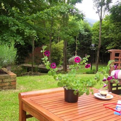 Petunia en el Jardín